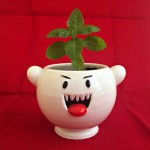 真っ白でまんまる、「テレサ」みたいな手づくり植木鉢が超カワイイ!